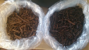 exhausted (left) fresh comminuted vanilla beans (right)