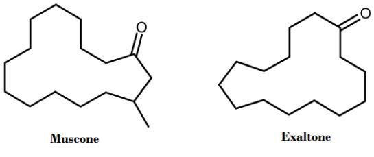 muscone-exaltone